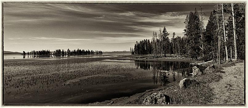 Sandra Bronstein - Pelican Bay Morning - Yellowstone