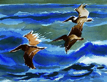 Pelican flight  10-15-15 by Julianne Felton
