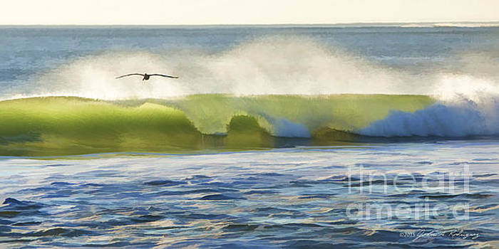 Pelican Flying Over Wind Wave by John A Rodriguez