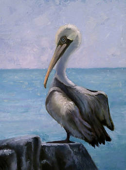 Pelican III by Wendie Thompson