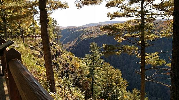 Pennsylvania Grand Canyon by James Guentner