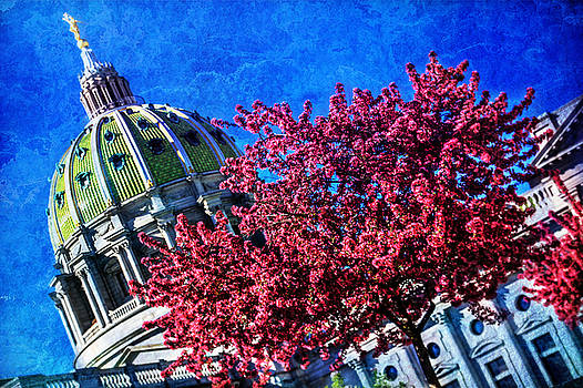 Pennsylvania State Capitol Dome in Bloom by Shelley Neff