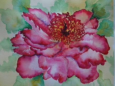 Peony Flower by Smita Medpalliwar