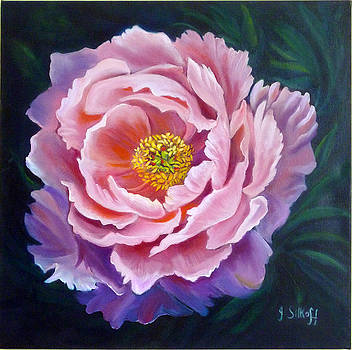 Peony by Janet Silkoff