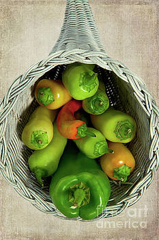 Peppers in a Horn of Plenty Basket by Dan Carmichael