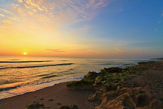 Perfect Morning at Beach by Catie Canetti