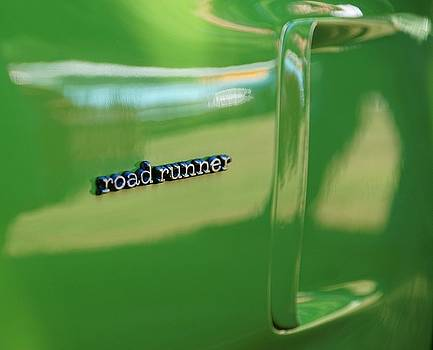 Perfect Roadrunner by Susan Bordelon