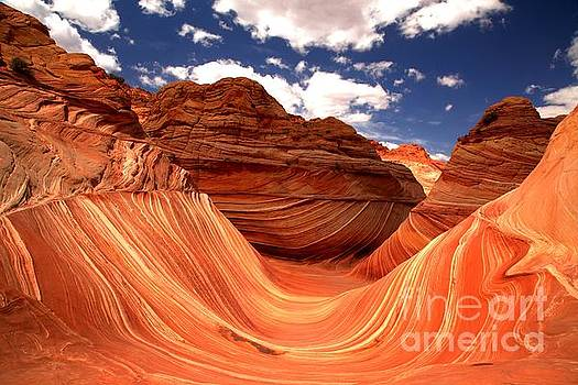 Adam Jewell - Petrified Dunes Landscape