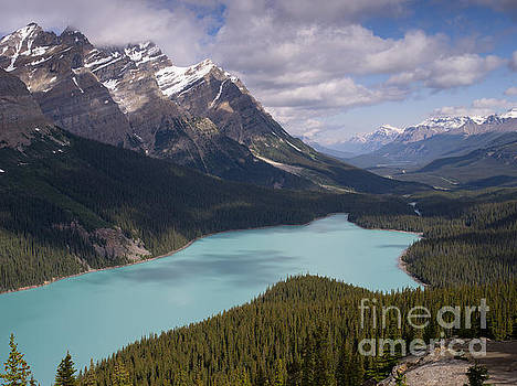 Peyto Lake  by Tracy Knauer