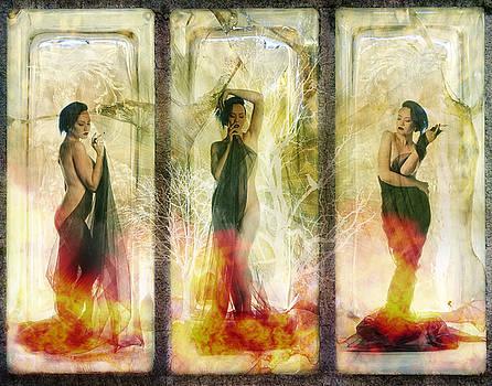 Phoenix Rising by Terry Fleckney