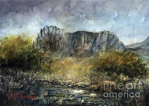 Picacho Peak Palo Verdes by Tim Oliver