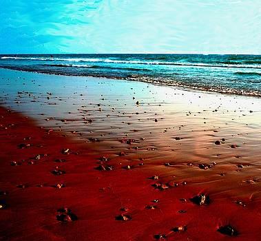 Picasso Beach by Jo Ann