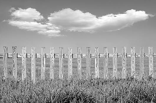 Picket Fence by Steven Michael