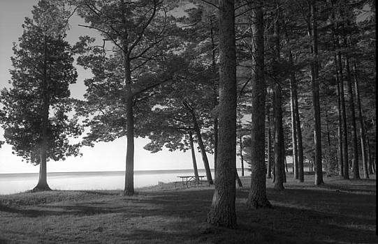 Picnic Table View-Newport State Park by Stephen Mack