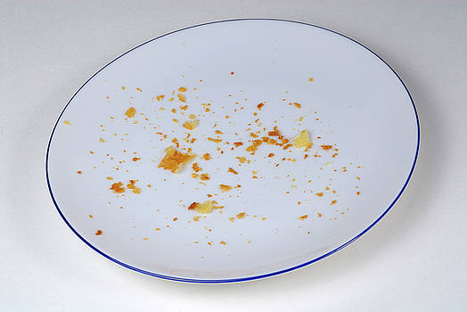 Sami Sarkis - Pie crumbs in an empty plate