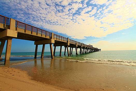 Pier Perfection by Catie Canetti