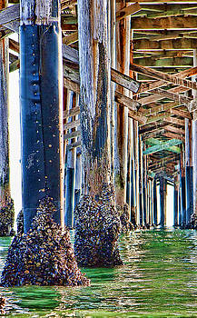 Pier Pylons Balboa by Chris Brannen