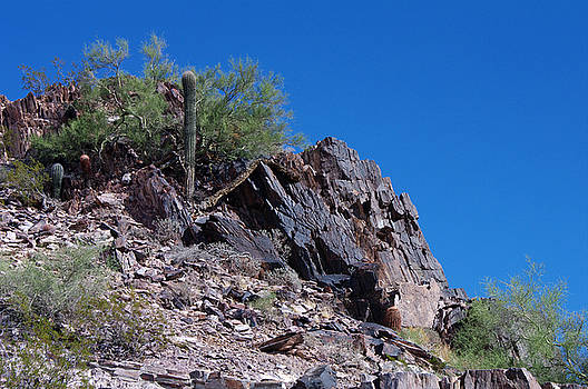 Piestewa Peak by Greg Graham