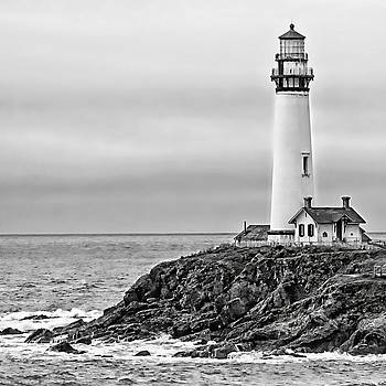 Pigeon Point Lighthouse by Suzanne Stout