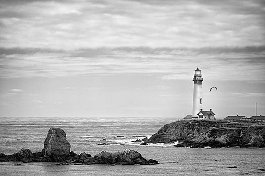 Pigeon Point Lightouse by Hali Sowle
