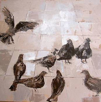 Pigeons by Alida Bothma