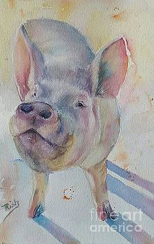 Piggy by Patricia Pushaw