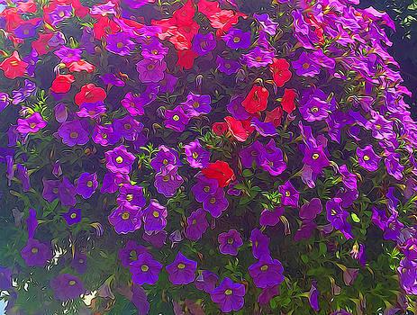 Cindy Boyd - Pile of Petunias