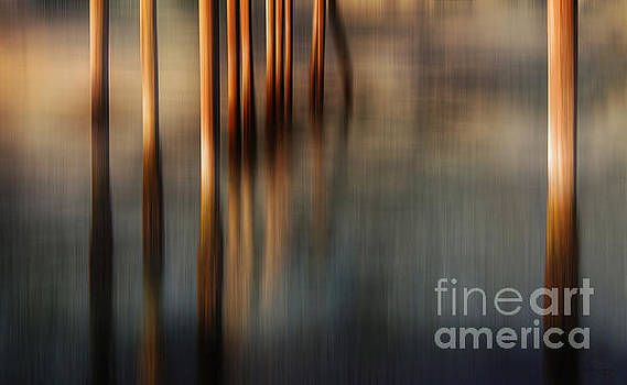 Pilings in Motion by Deena Athans
