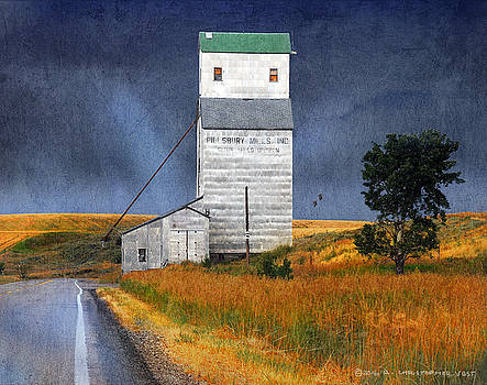 Pillsbury Grain Elevator Ashton Idaho2 by R christopher Vest