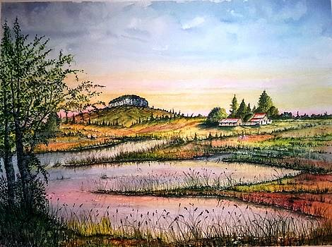 Pilot Mountain and farm Ponds by Richard Benson