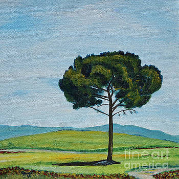 Pine close to the Chapel of La Vitaleta In Tuscany by Christine Huwer