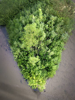 Mary Lee Dereske - Pine River Island