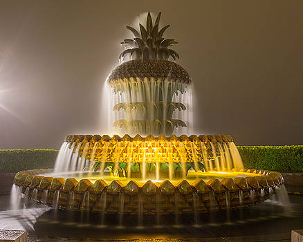 Pineapple Fountain 20 by Brent Paape
