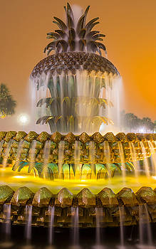 Pineapple Fountain 21 by Brent Paape