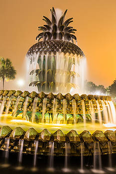 Pineapple Fountain 22 by Brent Paape