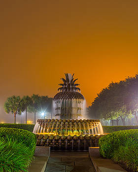 Pineapple Fountain 23 by Brent Paape