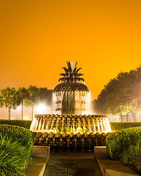 Pineapple Fountain 24 by Brent Paape