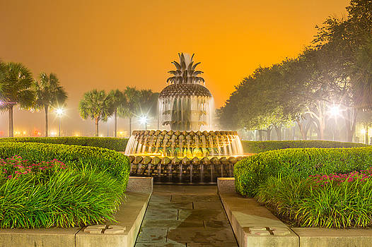 Pineapple Fountain 25 by Brent Paape