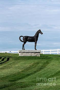 Pineland Farms Equestrian Center by John Greim