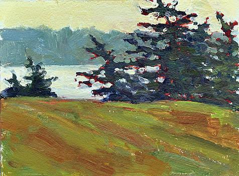 Pines on Salt Bay by Mary Byrom
