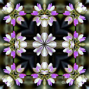 Pink And White Flowers Abstract by Smilin Eyes  Treasures