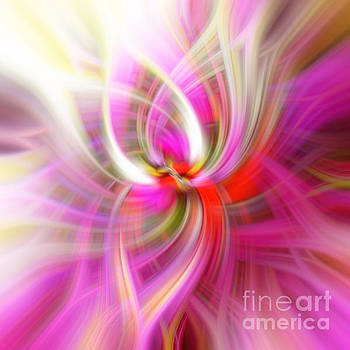 Pink and Yellow Swirl Abstract Design by Phill Petrovic