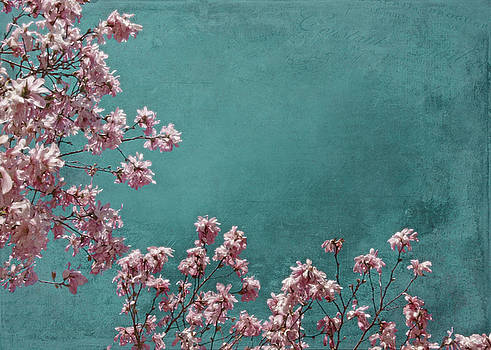 Pink Apple Blossoms on Teal Blue Green Sky by Brooke Ryan