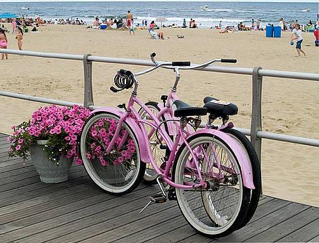Pink Bicycles  by Andrew Kazmierski