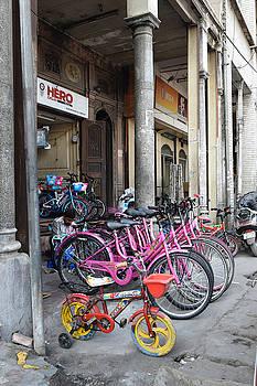 Sumit Mehndiratta - Pink bicycles