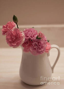 Pink Carnations by Sherry Hallemeier