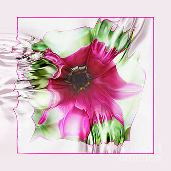 Pink Daisy by Elaine Hunter
