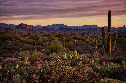Saija Lehtonen - Pink Desert Skies at Sunset