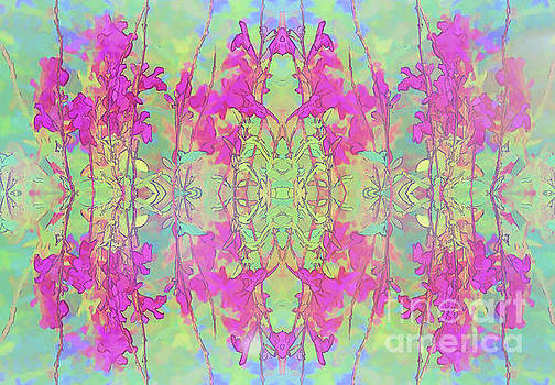 Pink Floral Abstract by Linda Phelps