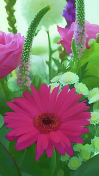 Pink flower by Paul Jarrett